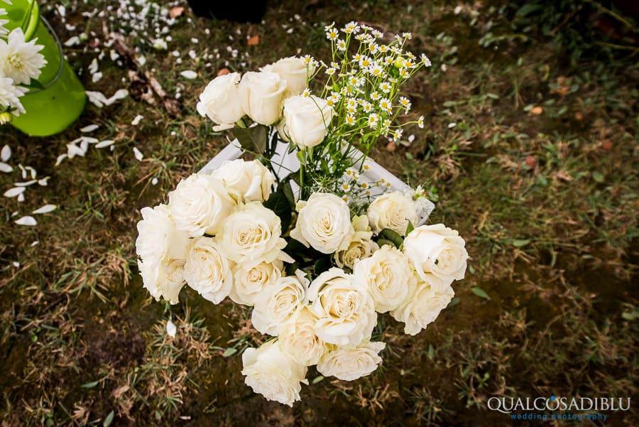 flowers roses borgo della meliana