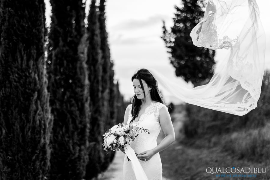 bride with veil black and white