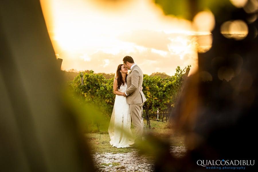 bride and groom in the vineyard
