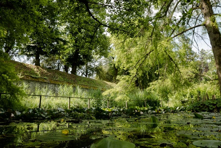 Small lake of the bothanical garden in Lucca