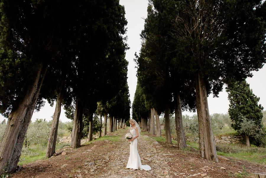 fattoria di cinciano cypresses road