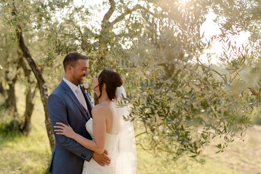 bride and groom in a olive trees field