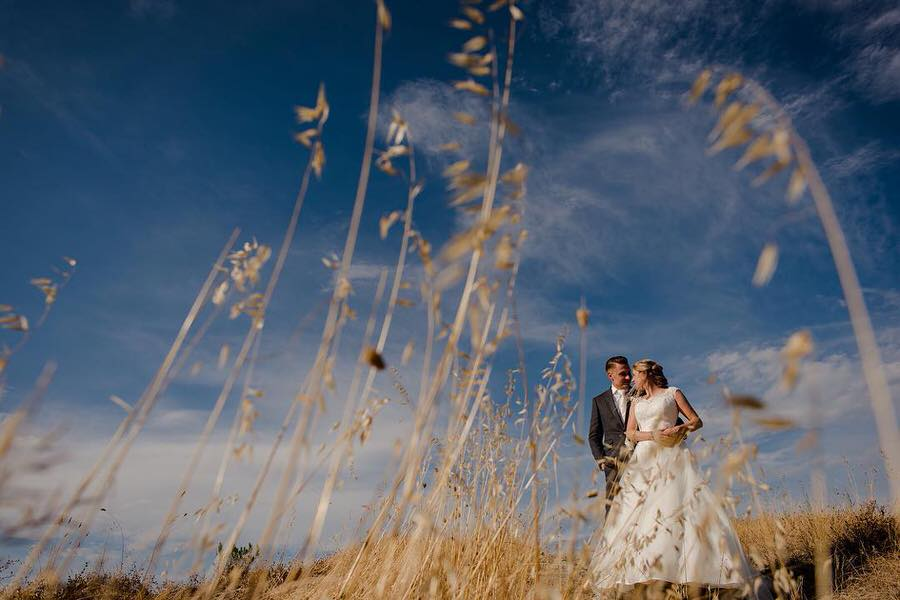wedding couple in a tuscan field